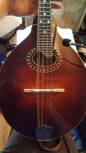 Mandolin with microphone attached
